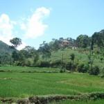 thalakumbura