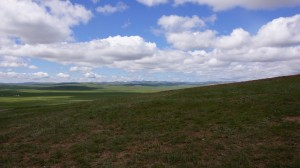 Prairies of Mongolia