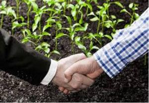 contract-farming